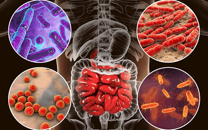 DR. ION: EVALUAREA MICROBIOTEI, ESENȚIALĂ ÎN DIAGNOSTICAREA ȘI TRATAMENTUL BOLILOR DIGESTIVE